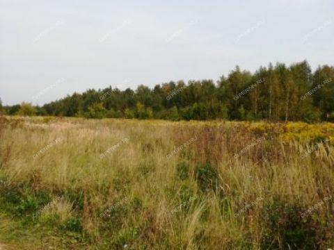 gorod-bor-gorodskoy-okrug-bor фото