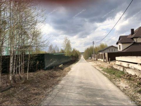 derevnya-myakotinskoe-gorodskoy-okrug-bor фото