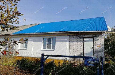 3-komnatnaya-derevnya-inyutino-bogorodskiy-rayon фото